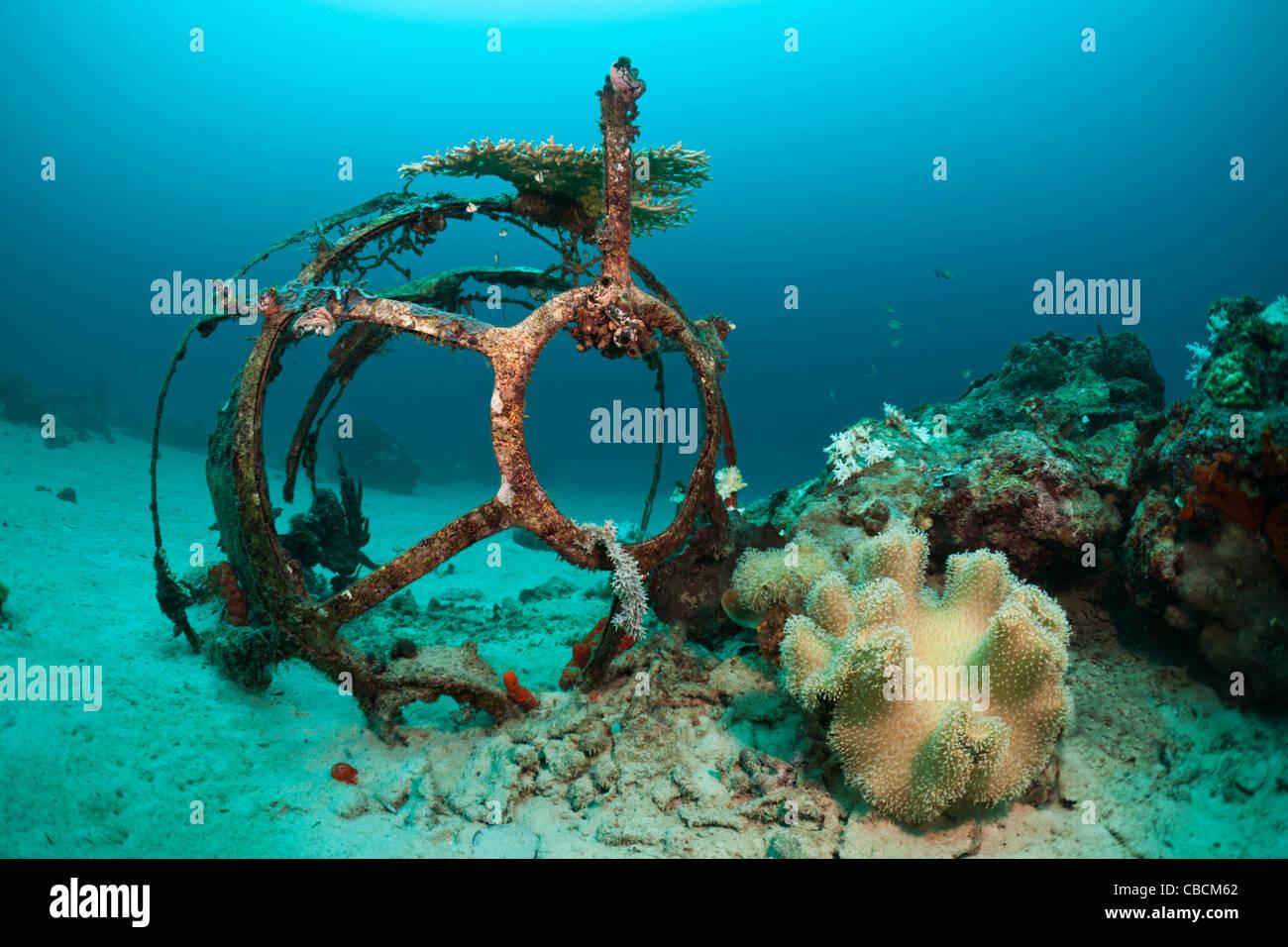 Aeroplane Wreckage at Ahe Housreef, Cenderawasih Bay, West Papua, Indonesia - Stock Image