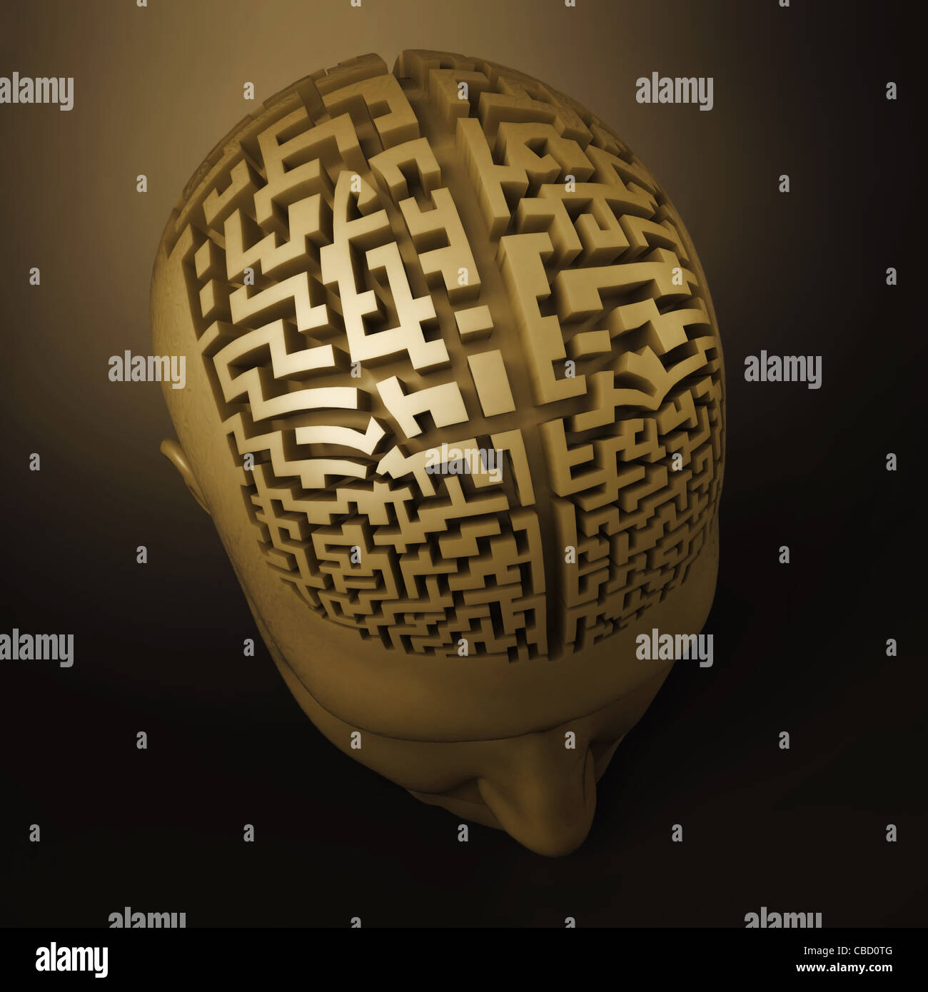 labyrinth in the human brain - Stock Image