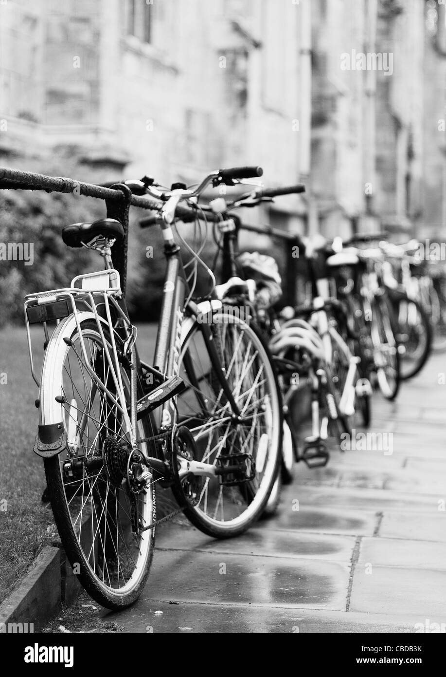 Row of parked bikes - Stock Image