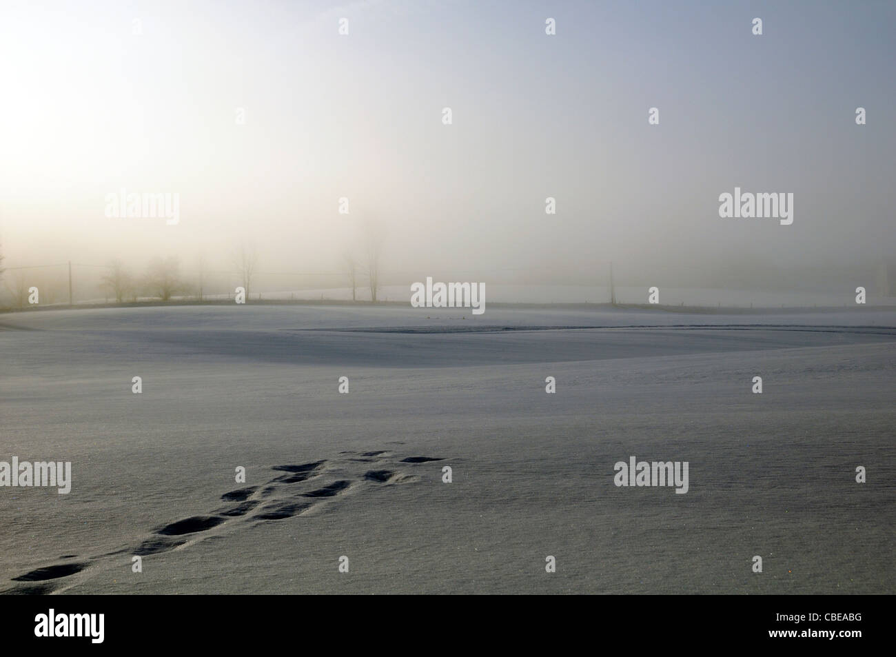 Footprints or animal tracks across a snowy field leading nowhere - Stock Image