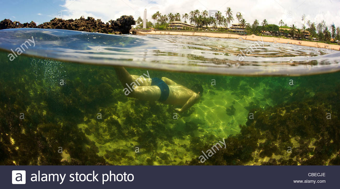 Brazilian man swimming underwater in the Praia do Forte beach, Bahia state, Brazil. - Stock Image