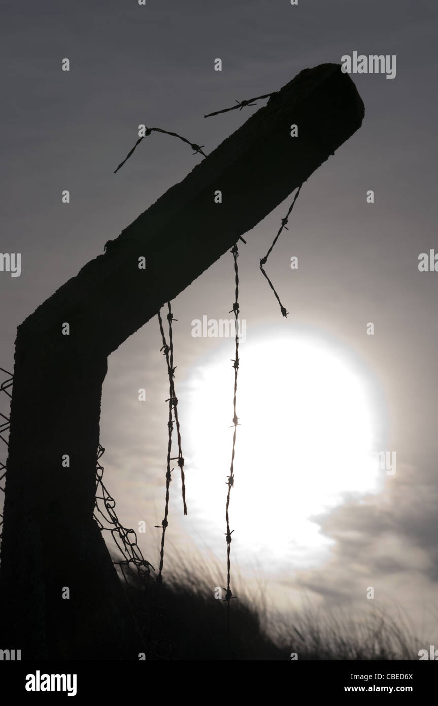 Old concrete and barbed wire fence against sunlight - Stock Image