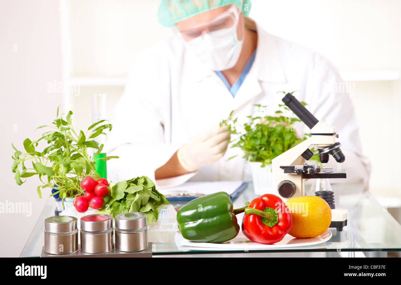 Researcher holding up a GMO vegetable in the laboratory Stock Photo