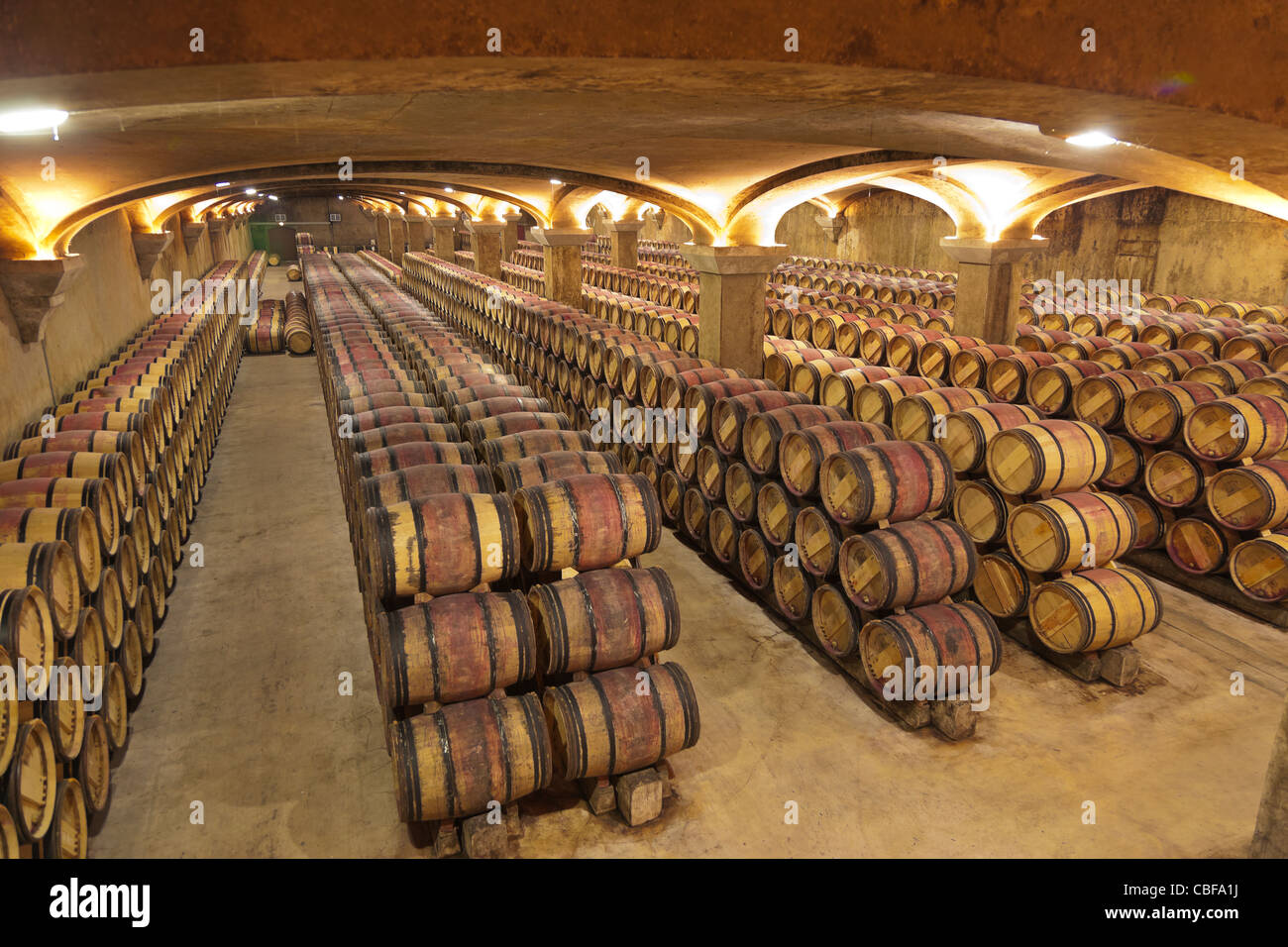 In the Château Margaux cellar., The Château Margaux wine waits 25 months in wooden barrel, from various - Stock Image