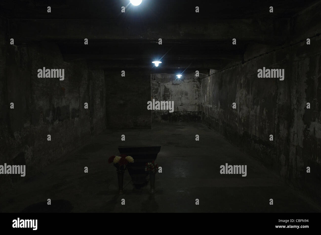 Inside the gas chamber, Auschwitz concentration camp, which could exterminate 700 people at a time - Stock Image