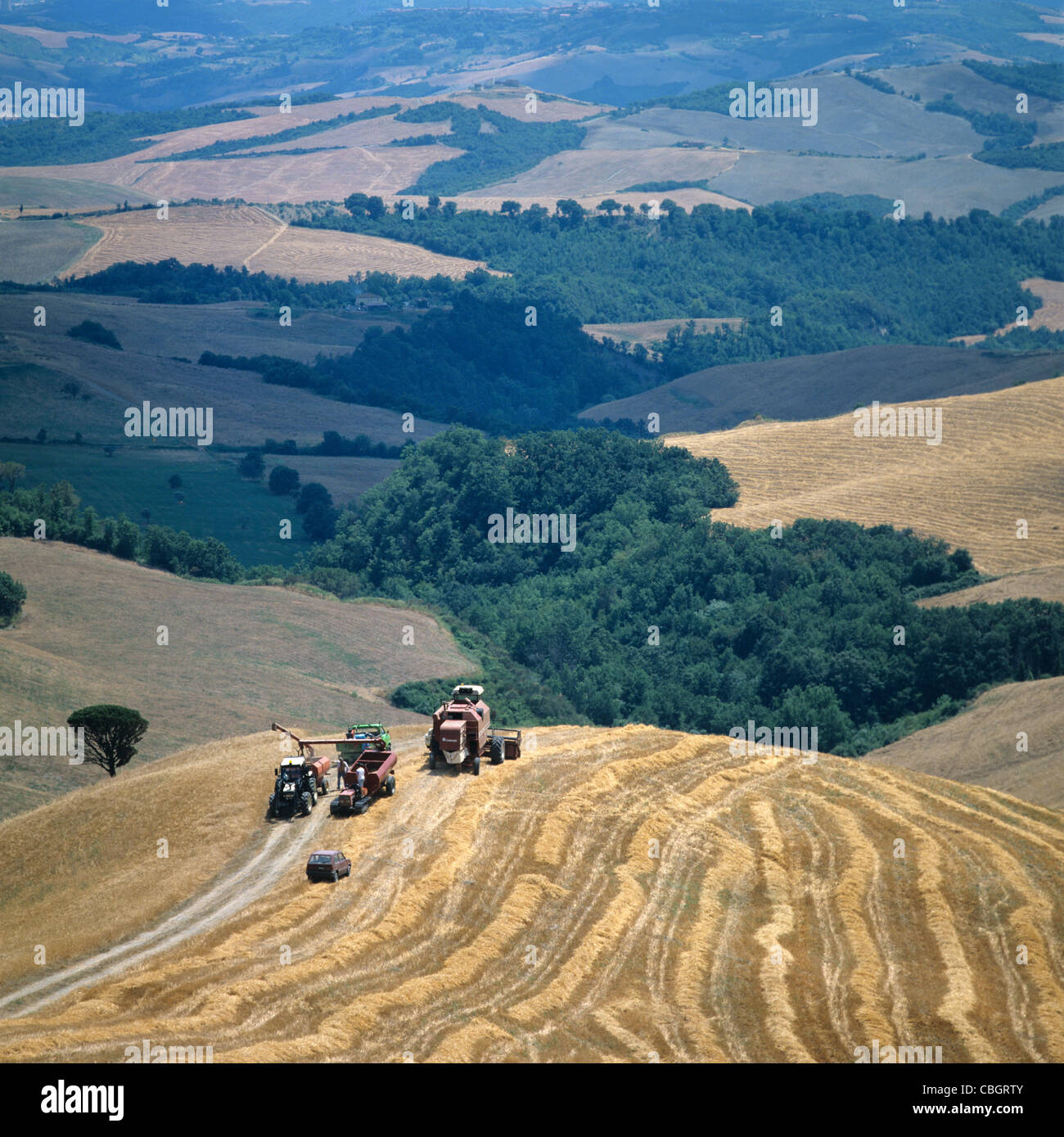 Rolling cereal farmland in the Volterra, Italy, with combine harvesters - Stock Image