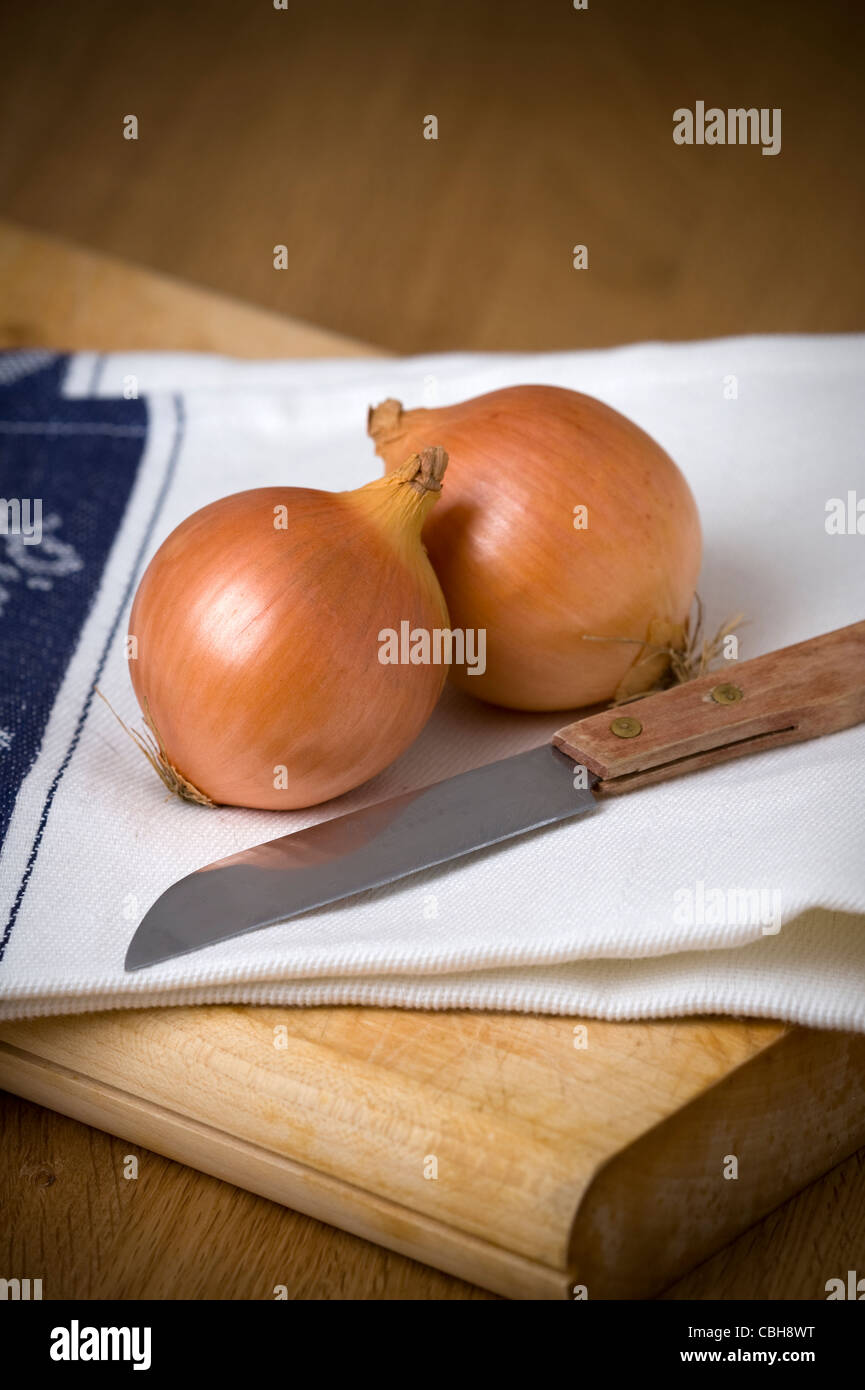two raw onions on a white tea towel and a chopping board with a wooden handled knife - Stock Image