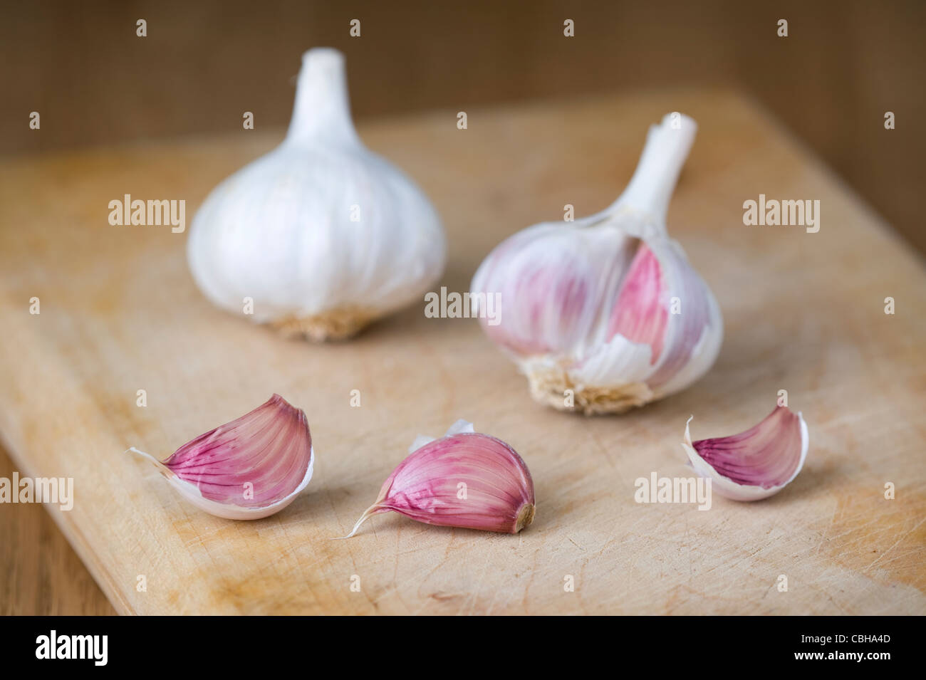 garlic bulbs and cloves on a wooden chopping board - Stock Image