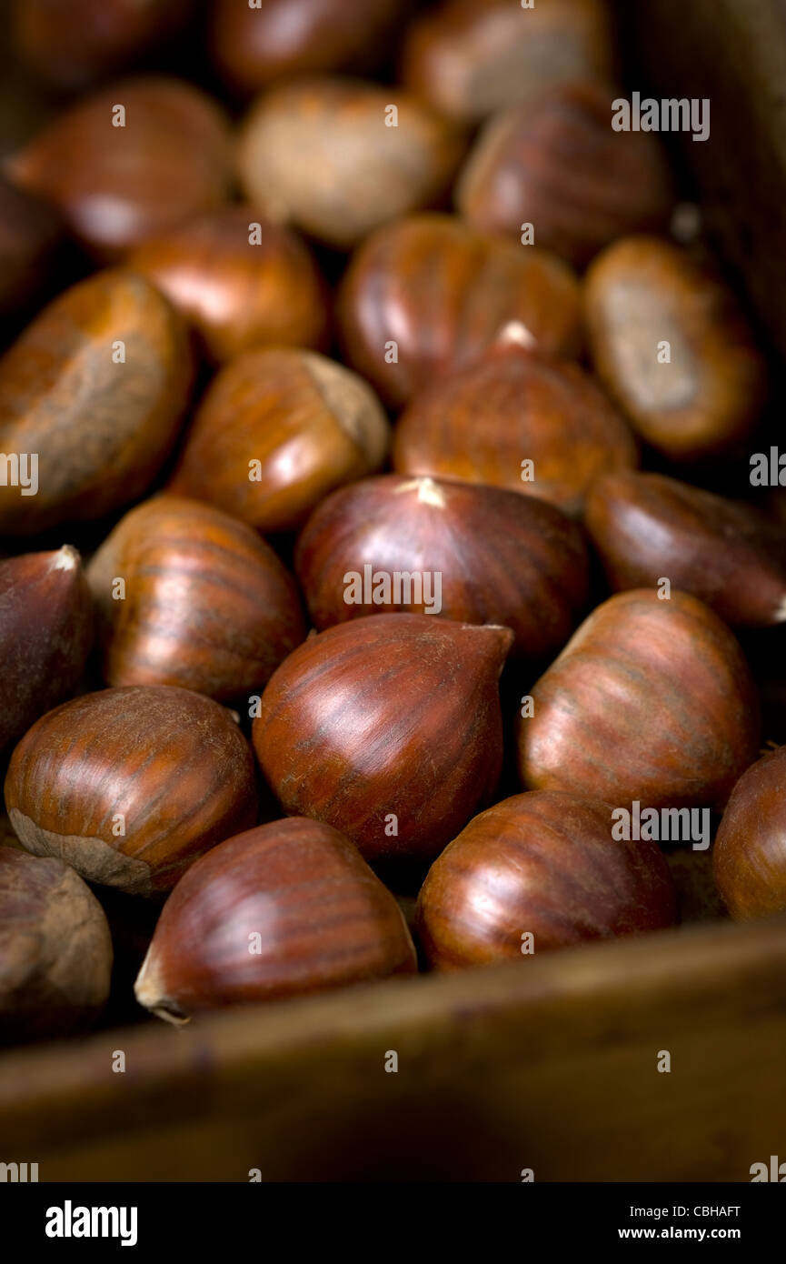 sweet chestnuts in a roasting tin - Stock Image
