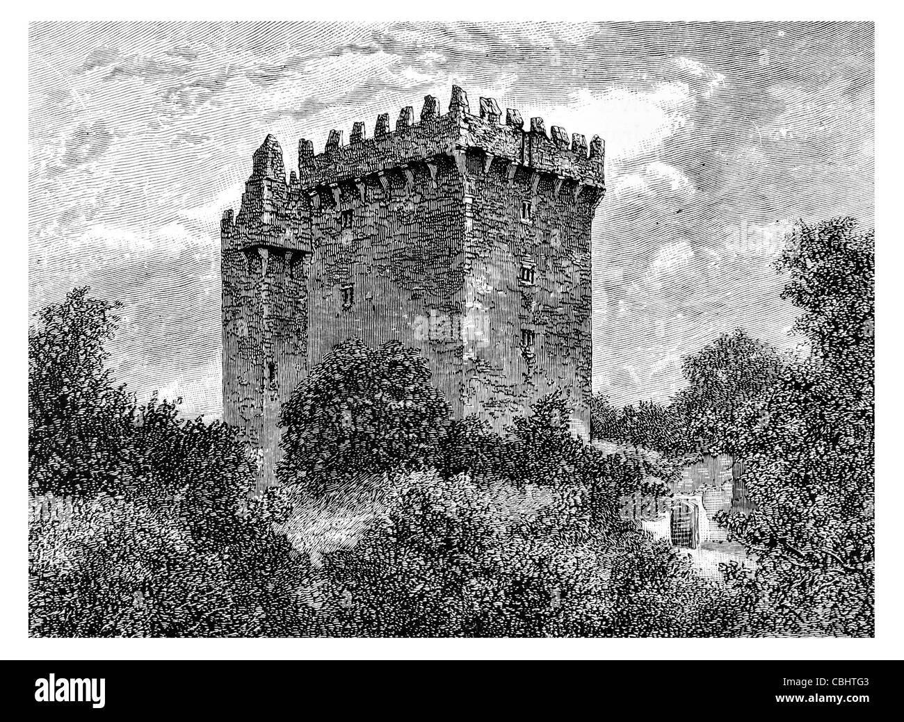 Blarney Castle medieval stronghold Blarney Cork Ireland MacCarthy Muskerry Castle fort fortification bastion chateau - Stock Image