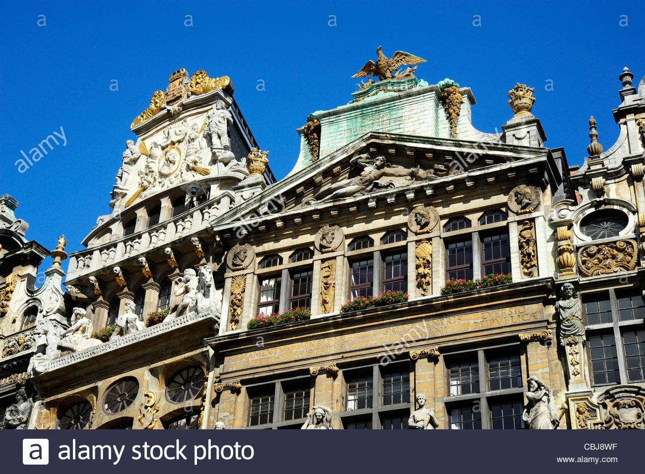 Baroque Style Houses At The Grand Place In Sunlight Brussels Belgium Europe
