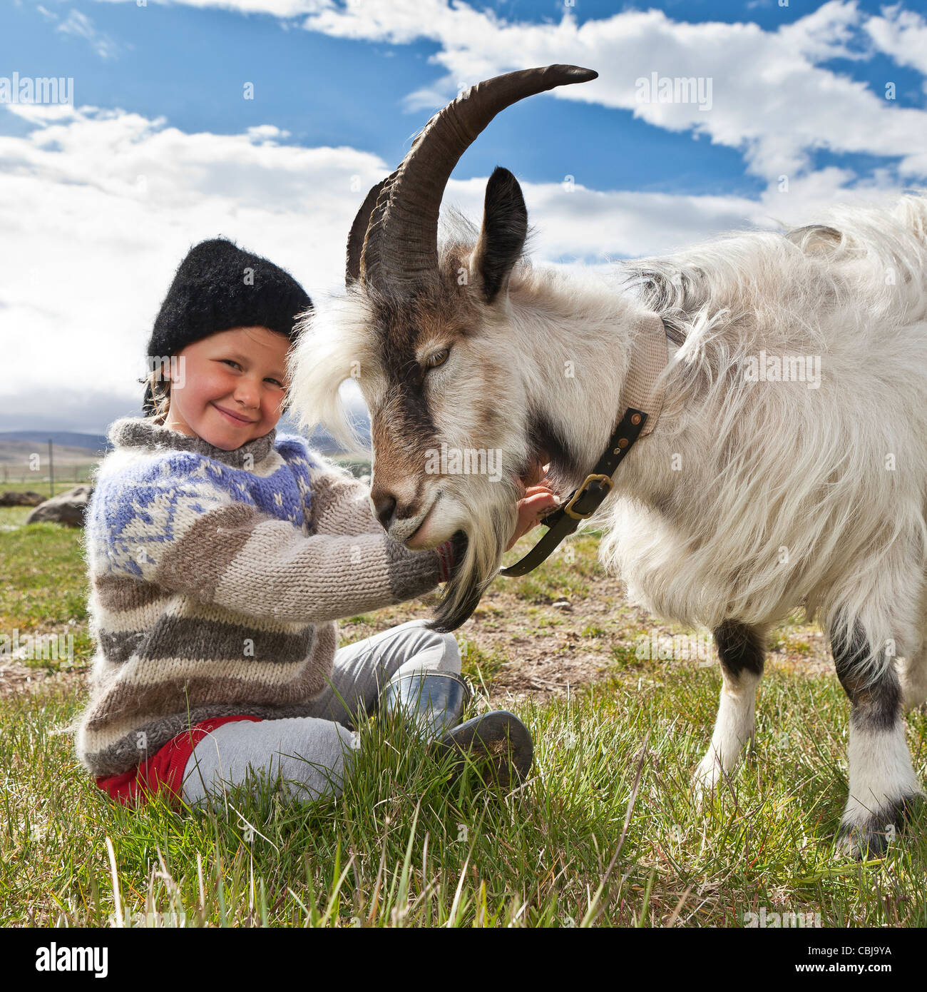 Girl with goat, Goat farm, Iceland - Stock Image