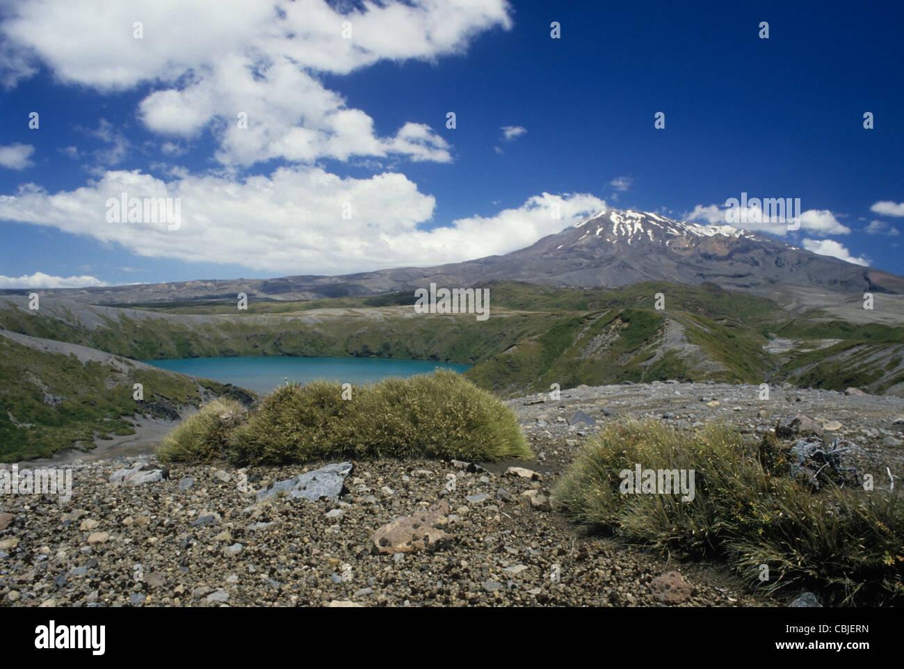 New Zealand, Tongariro N.P. Mt Ruapehu. North Island. - Stock Image