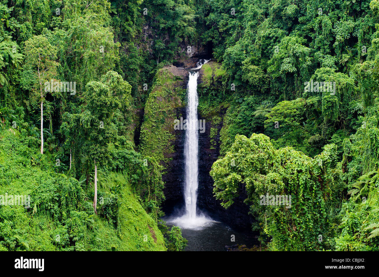 Water fall surround by lush vegetation, Samoa - Stock Image