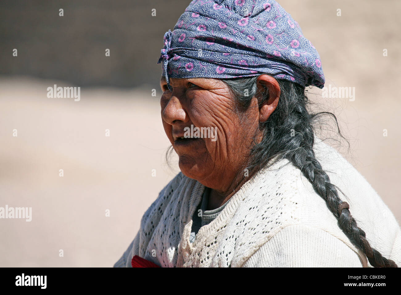 Portrait of traditionally dressed Bolivian woman with headscarf and tress, Altiplano, Bolivia - Stock Image