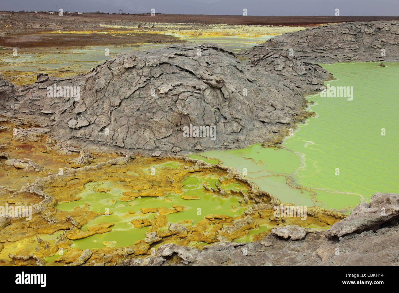 Dallol geothermal area, potassium salt deposits formed by brine hot springs, Danakil Depression, Ethiopia. Stock Photo