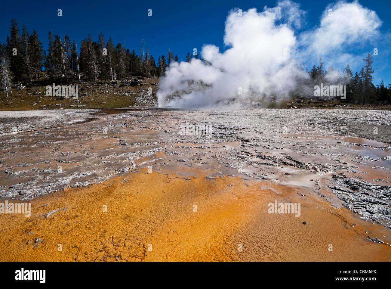 Grand/Turban Geysers Yellowstone National Park Wyoming USA - Stock Image
