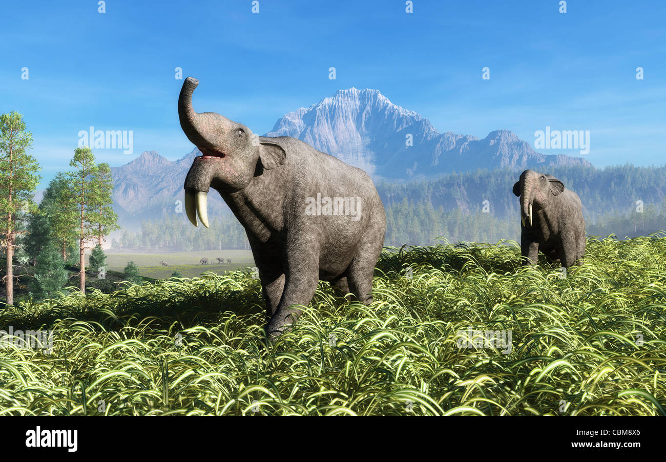 Deinotherium traverse the rolling plains of what is today Europe. - Stock Image