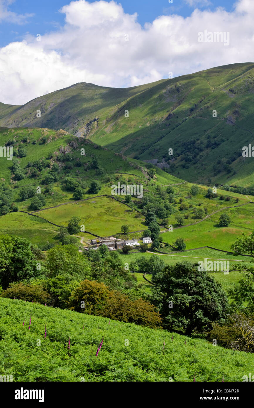 Troutbeck Park Farm, Cumbria. The fell known as The Tongue is behind the farm overshadowed by higher peaks of Ill - Stock Image