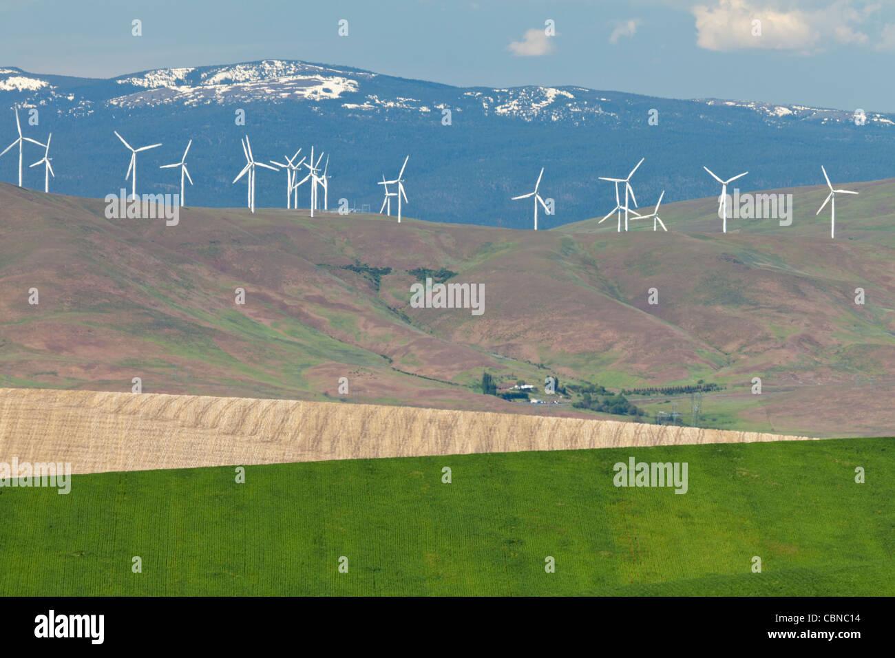 Farm fields, Wind Turbines, Near Wasco, Oregon - Stock Image