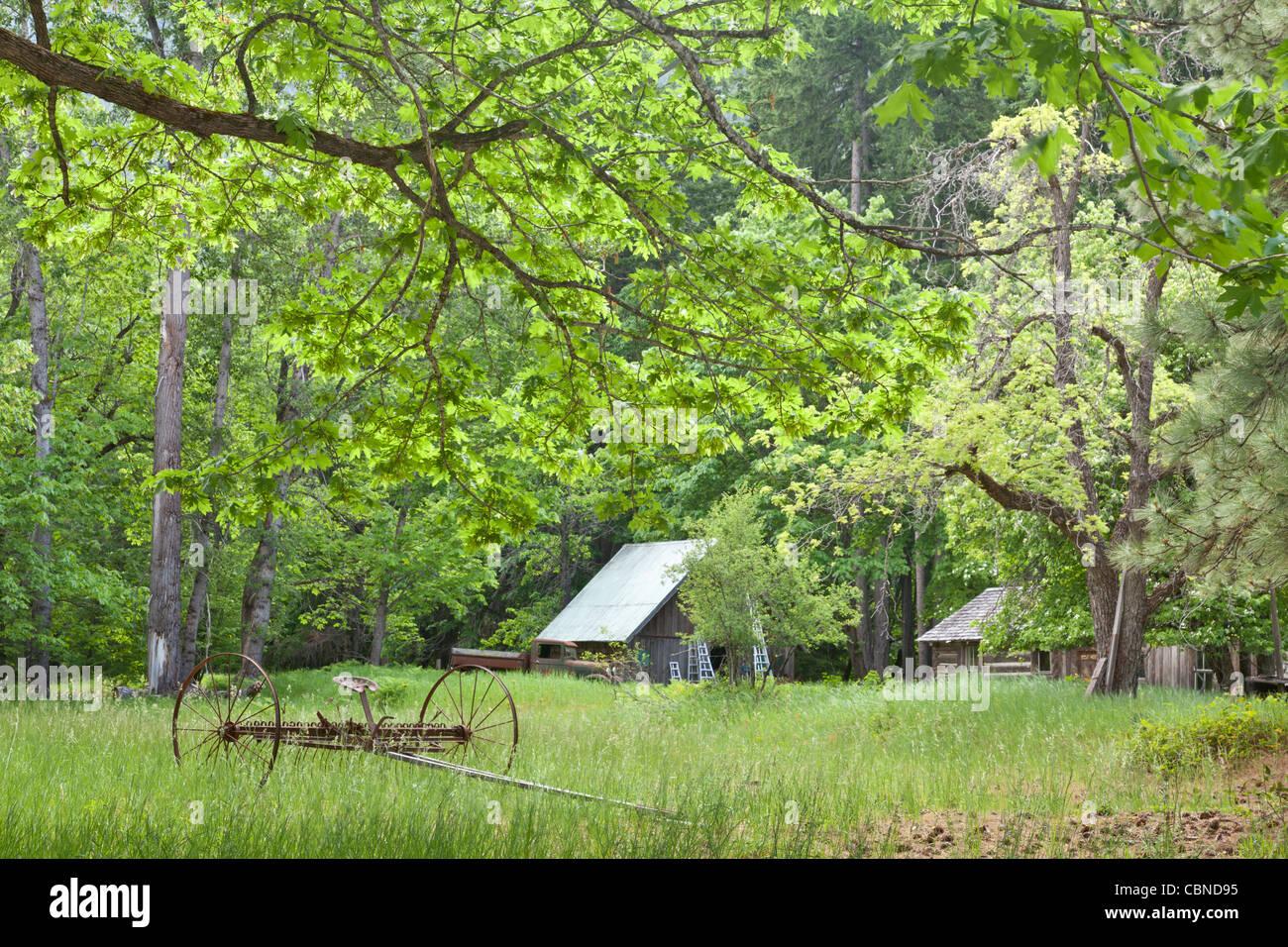 Historic Buckner Orchard and Homestead North Cascades National Park, Washington - Stock Image