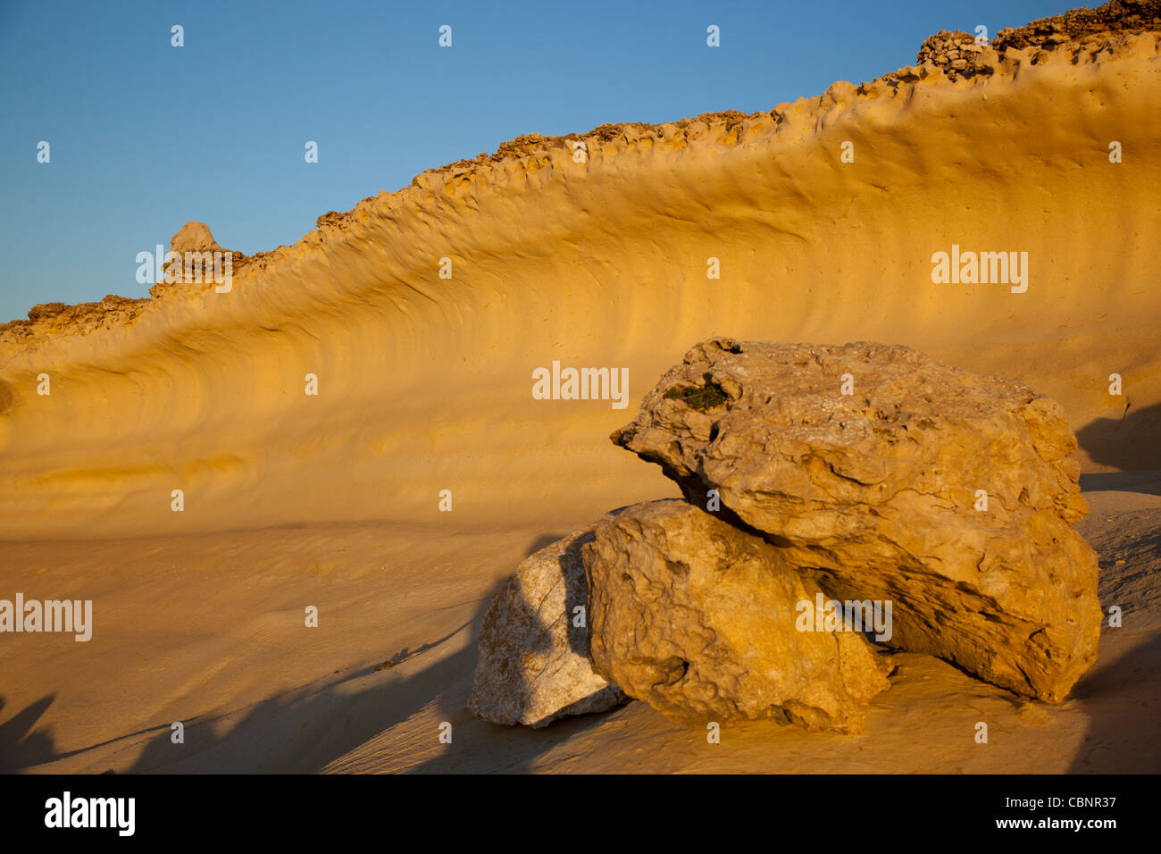A layer of globigerina limestone formed into a concave wave by wind erosion in the northwestern coast of Gozo, Malta. - Stock Image