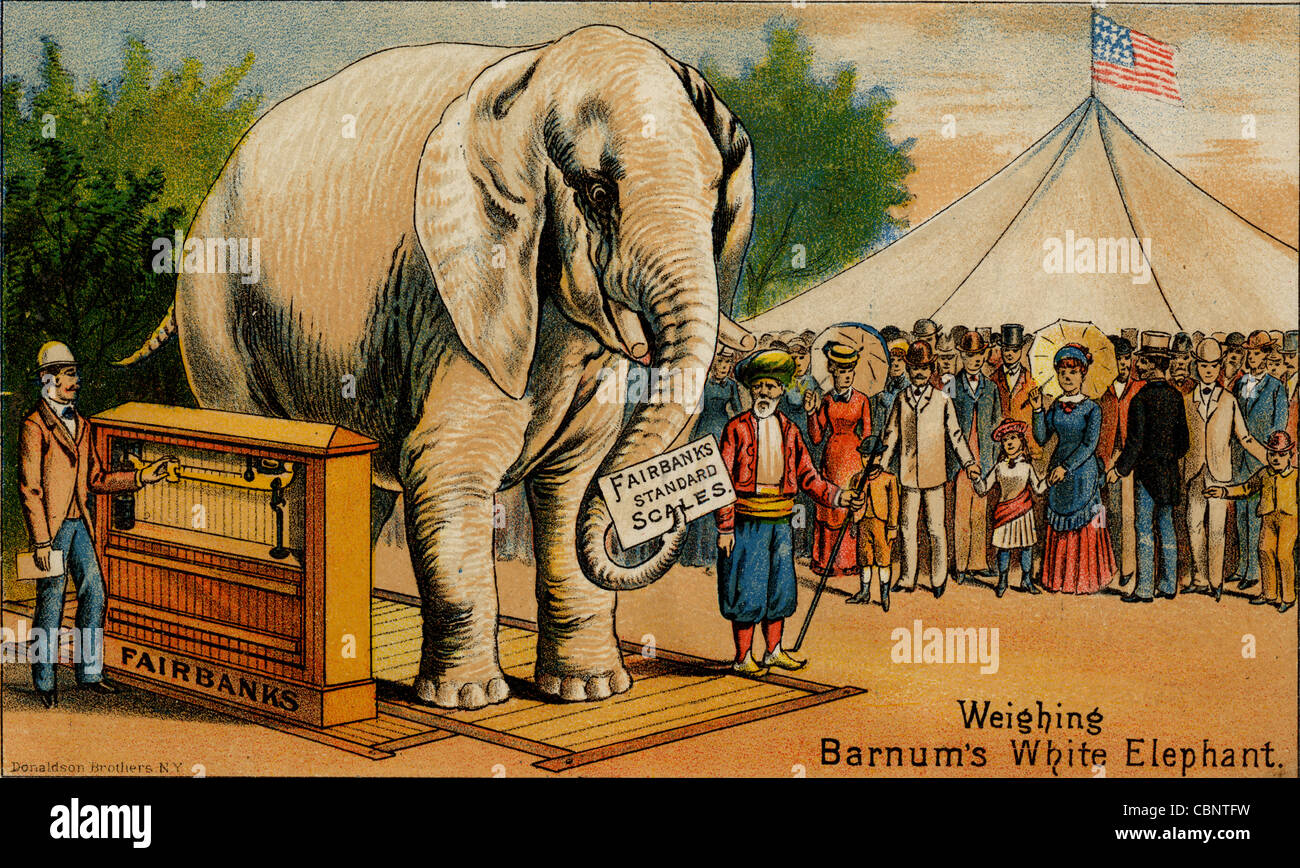 Circus Elephant Stock Photos & Circus Elephant Stock Images - Alamy
