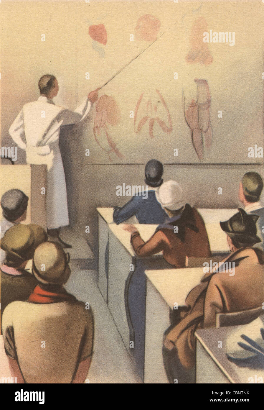Italian Medical School Anatomy Class Stock Photo 41662367 Alamy
