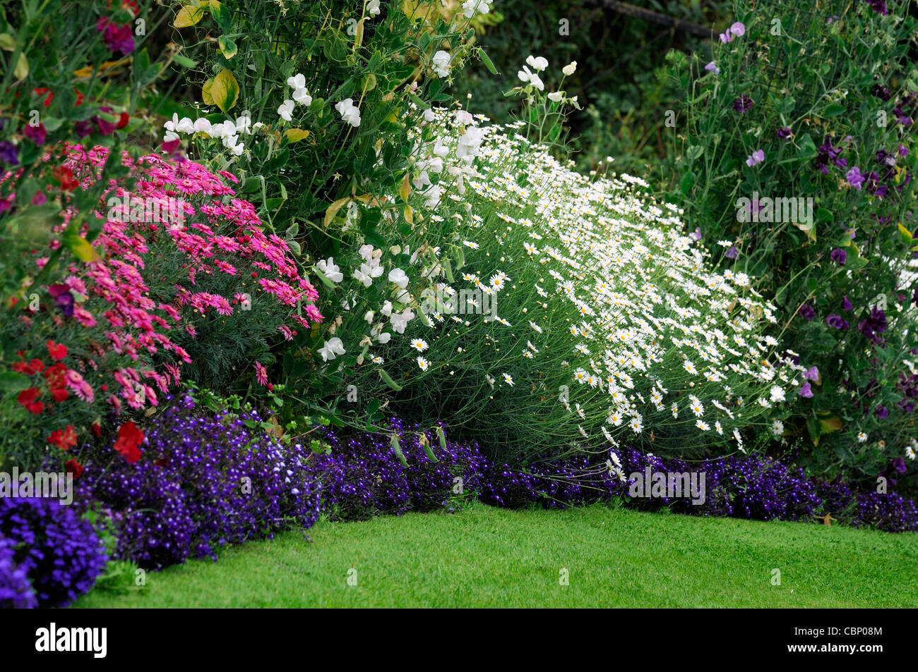 Summer flowering perennials stock photos summer flowering summer flowering flowers herbaceous border bed flower plant planting mixed perennials colour color stock image mightylinksfo Choice Image