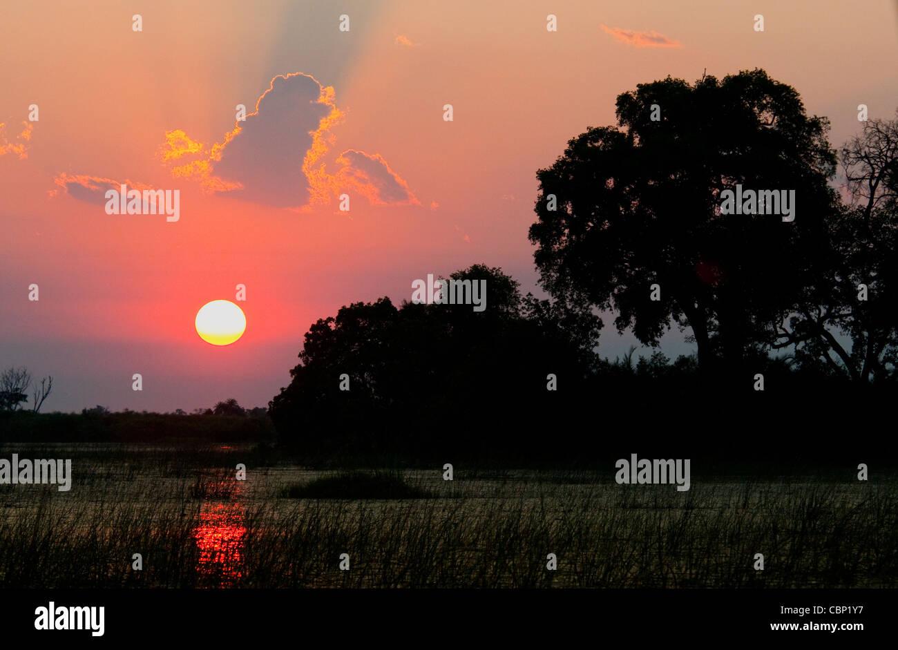 Africa Botswana Sunset over Okavango Delta - Stock Image