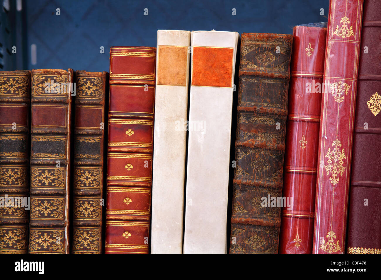 Antiquarian books standing on a shelf - Stock Image