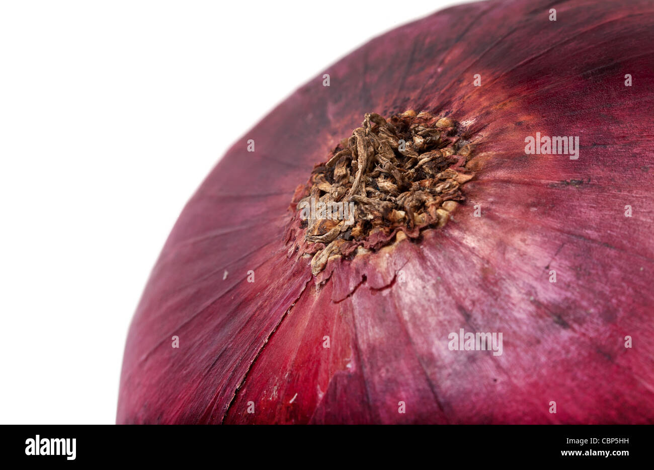 Red onion bulb closeup on white background isolated Stock Photo
