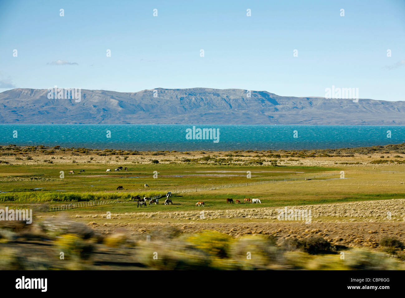 Landscape near El Calafate area with Lago Argentino on the background, Santa Cruz province. Patagonia. Argentina. - Stock Image