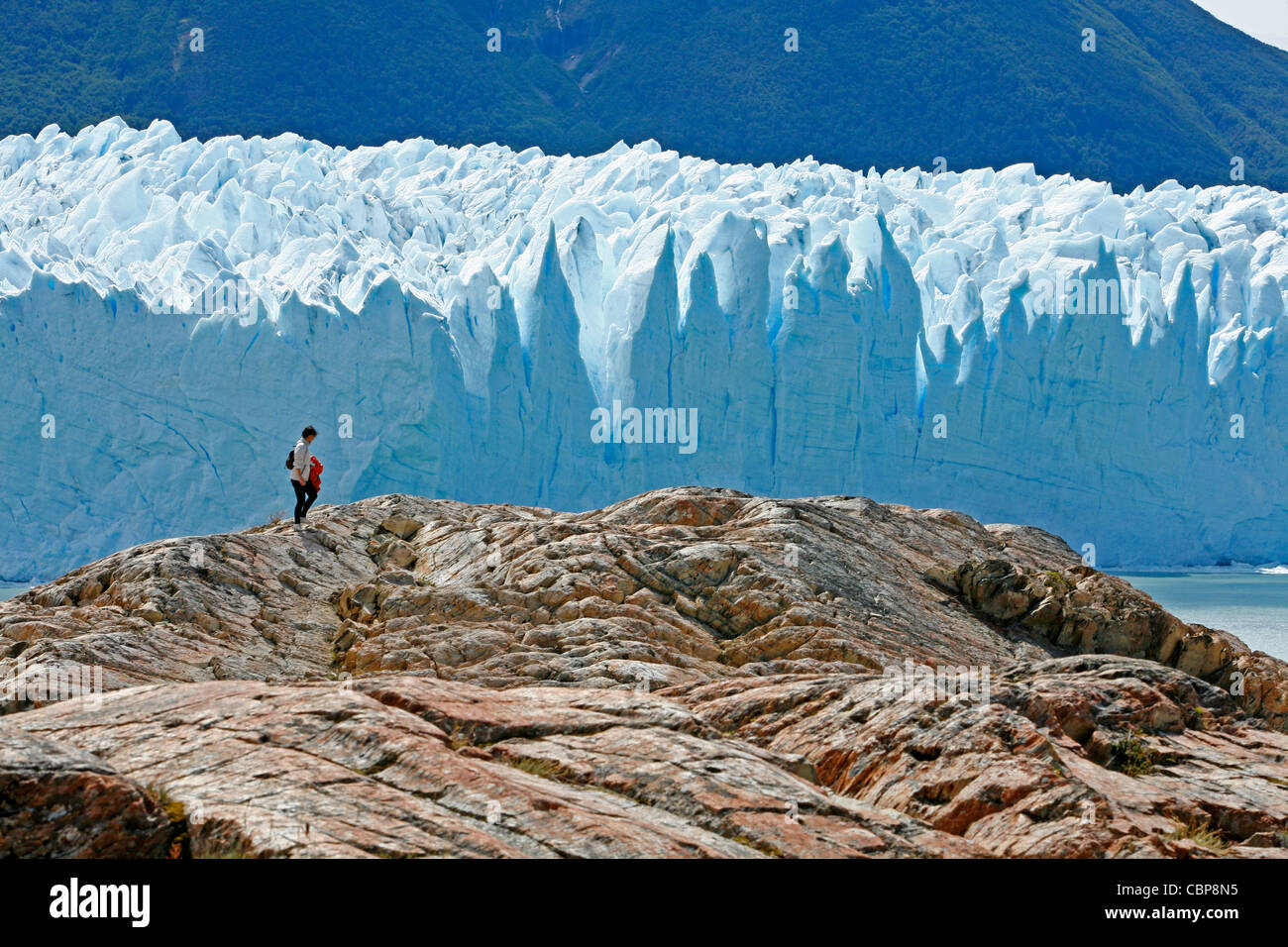 Perito Moreno glacier. Los Glaciares National Park, El Calafate area, Santa Cruz province. Patagonia. Argentina. - Stock Image