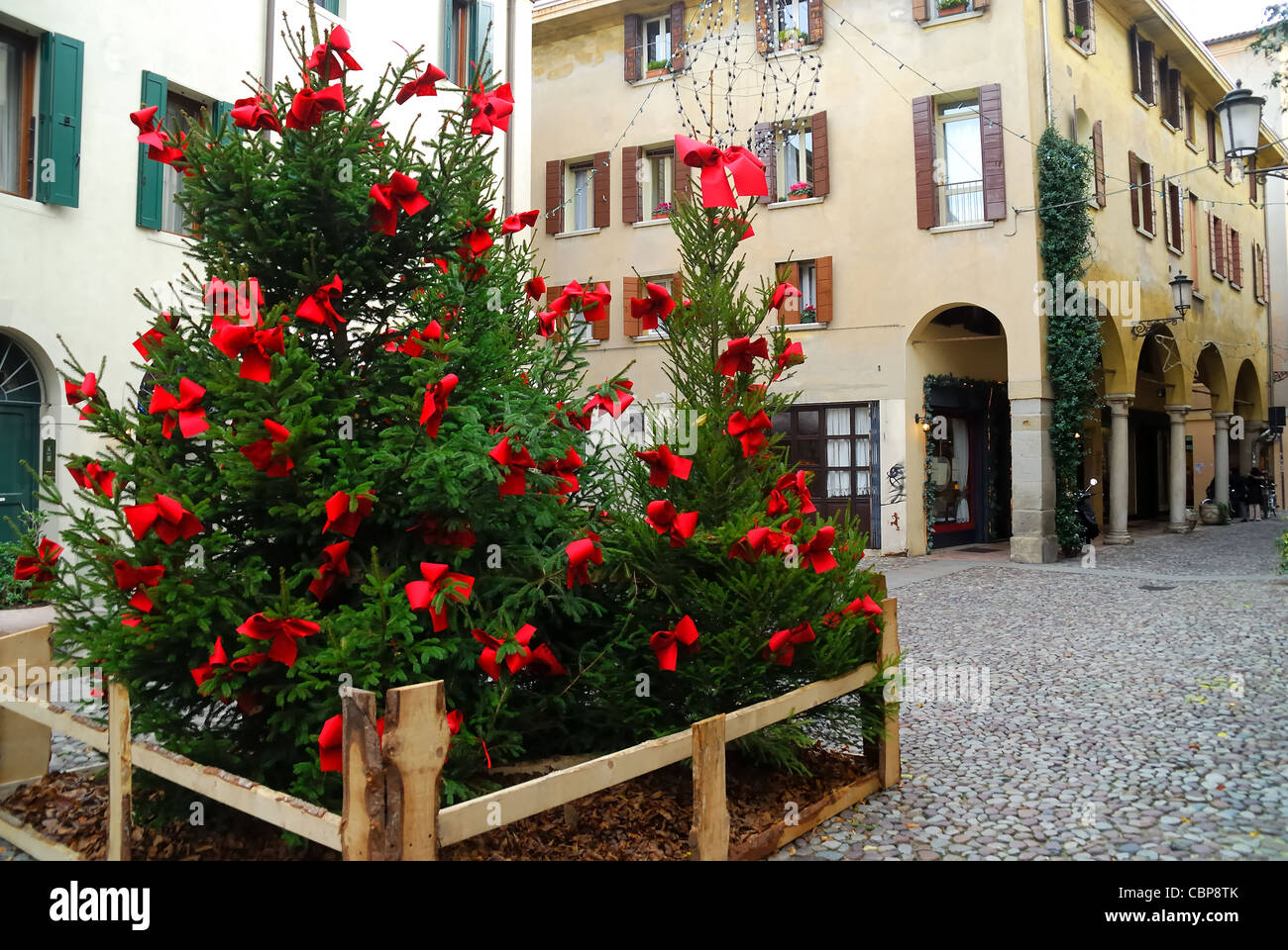 Padua, Italy : Christmas trees in a little square of the Jew Ghetto ...