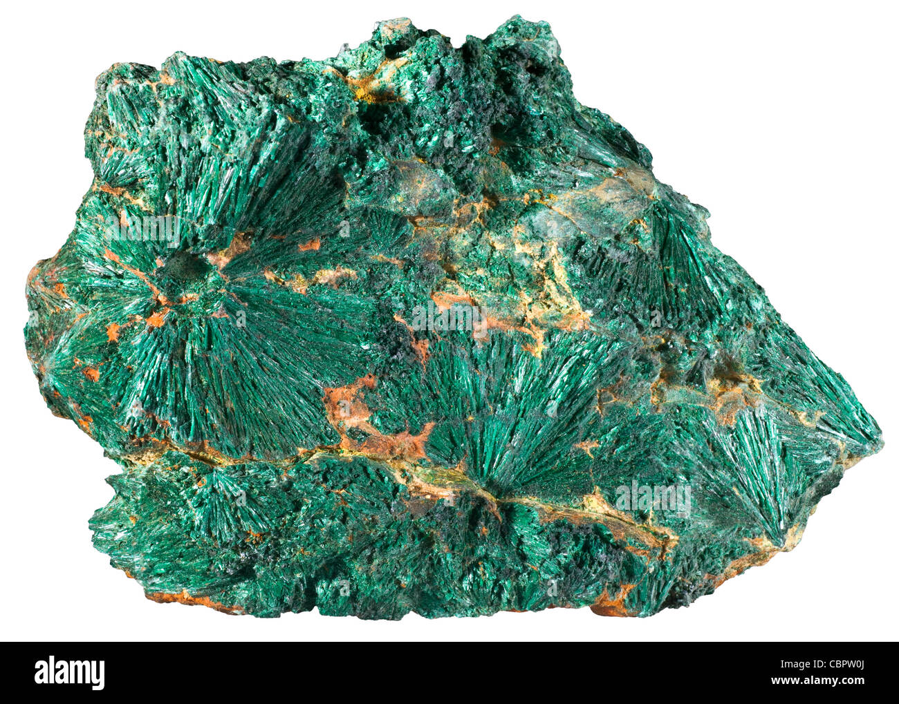 Fibrous Malachite from the Copper Queen Mine, Bisbee, Arizona - Stock Image