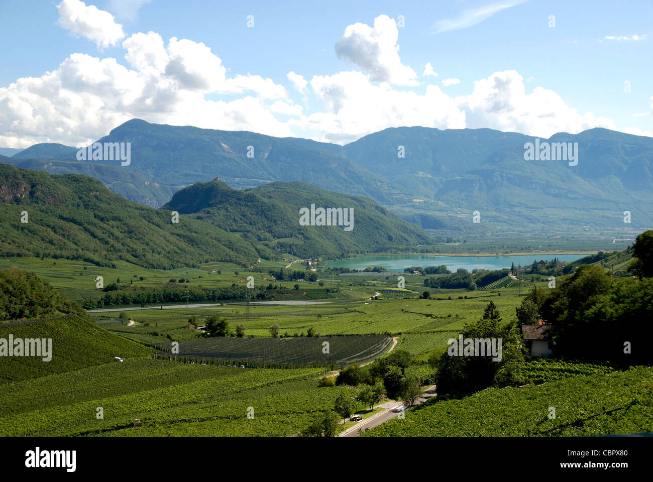Lake Caldaro with vineyards at the South Tyrolean wine route. - Stock Image