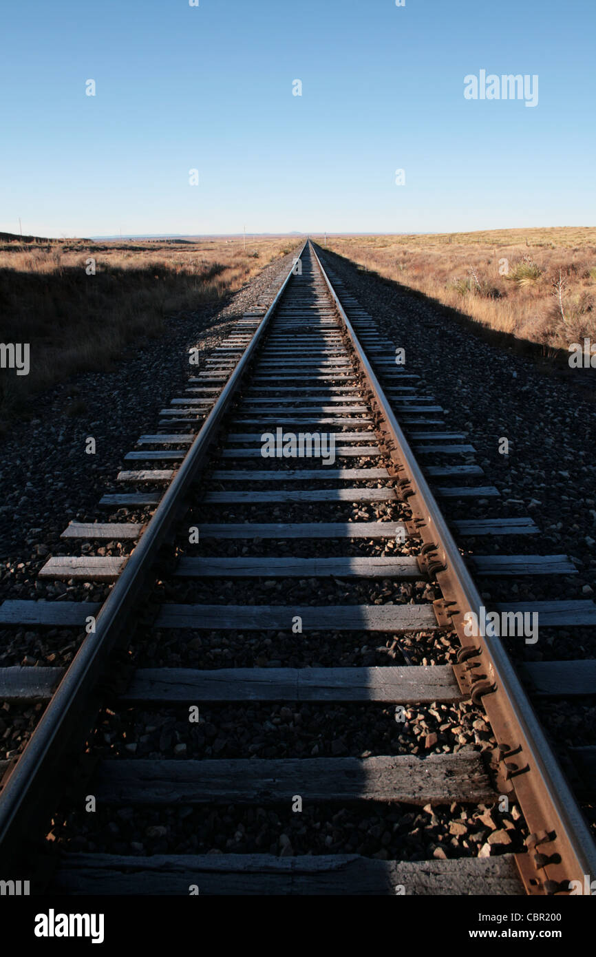 railroad tracks extend straight to the horizon - Stock Image