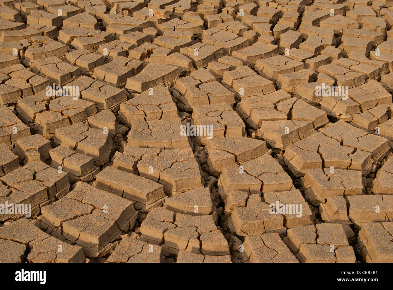 A wast area of deep cracked Soil - Stock Image