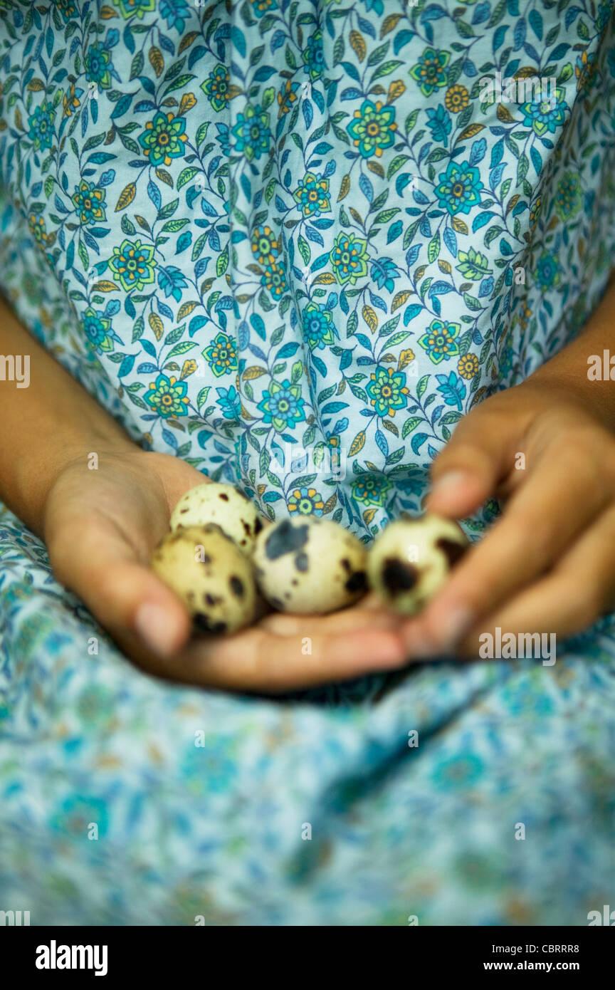 Girl holding speckled bird's eggs - Stock Image