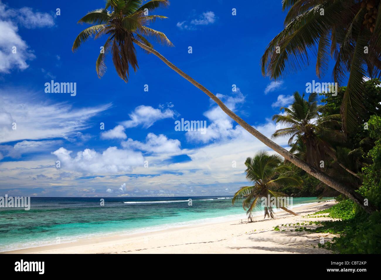 Anse Bougainville beach, Mahe Island, Indian Ocean, Seychelles - Stock Image