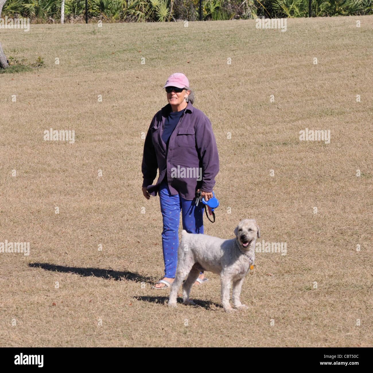 Woman with her standard poodle at the Bicentennial Park dog park in Ormand Beach, Florida - Stock Image