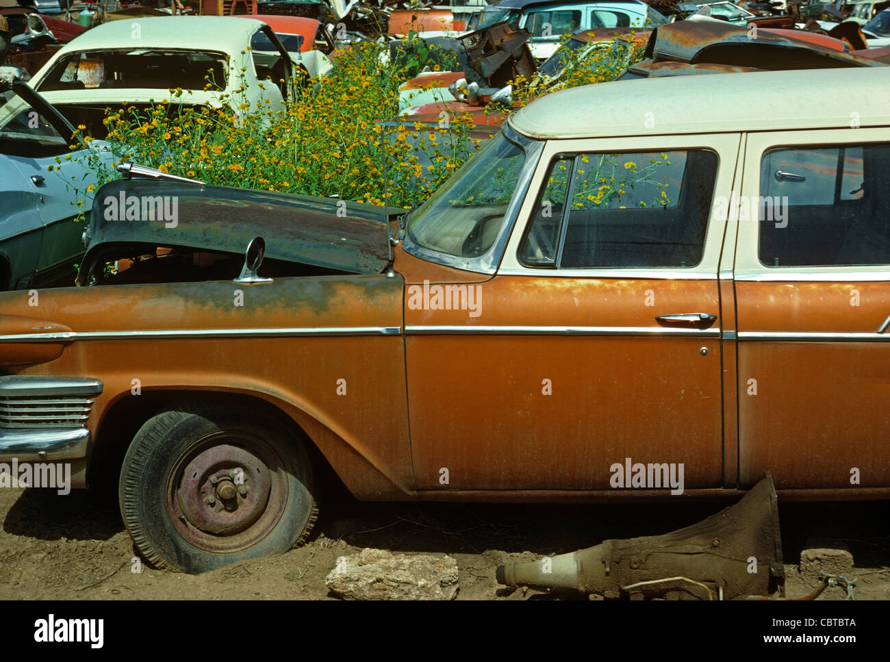 Abandoned cars in junkyard, Denver Colorado US Stock Photo: 41718106 ...