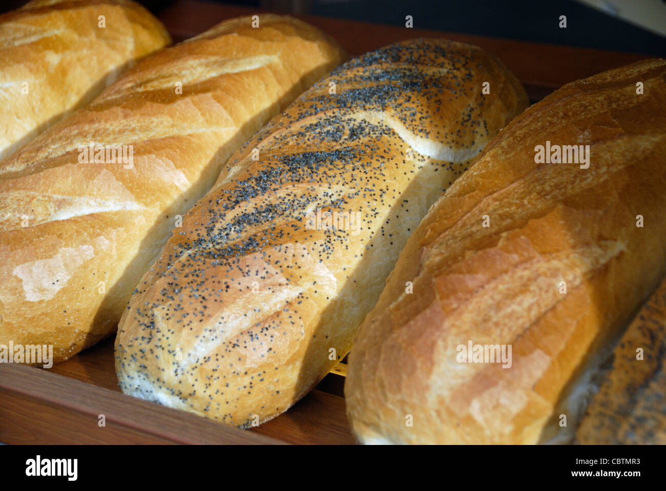 Bloomer loaves in a bakery shop window - Stock Image