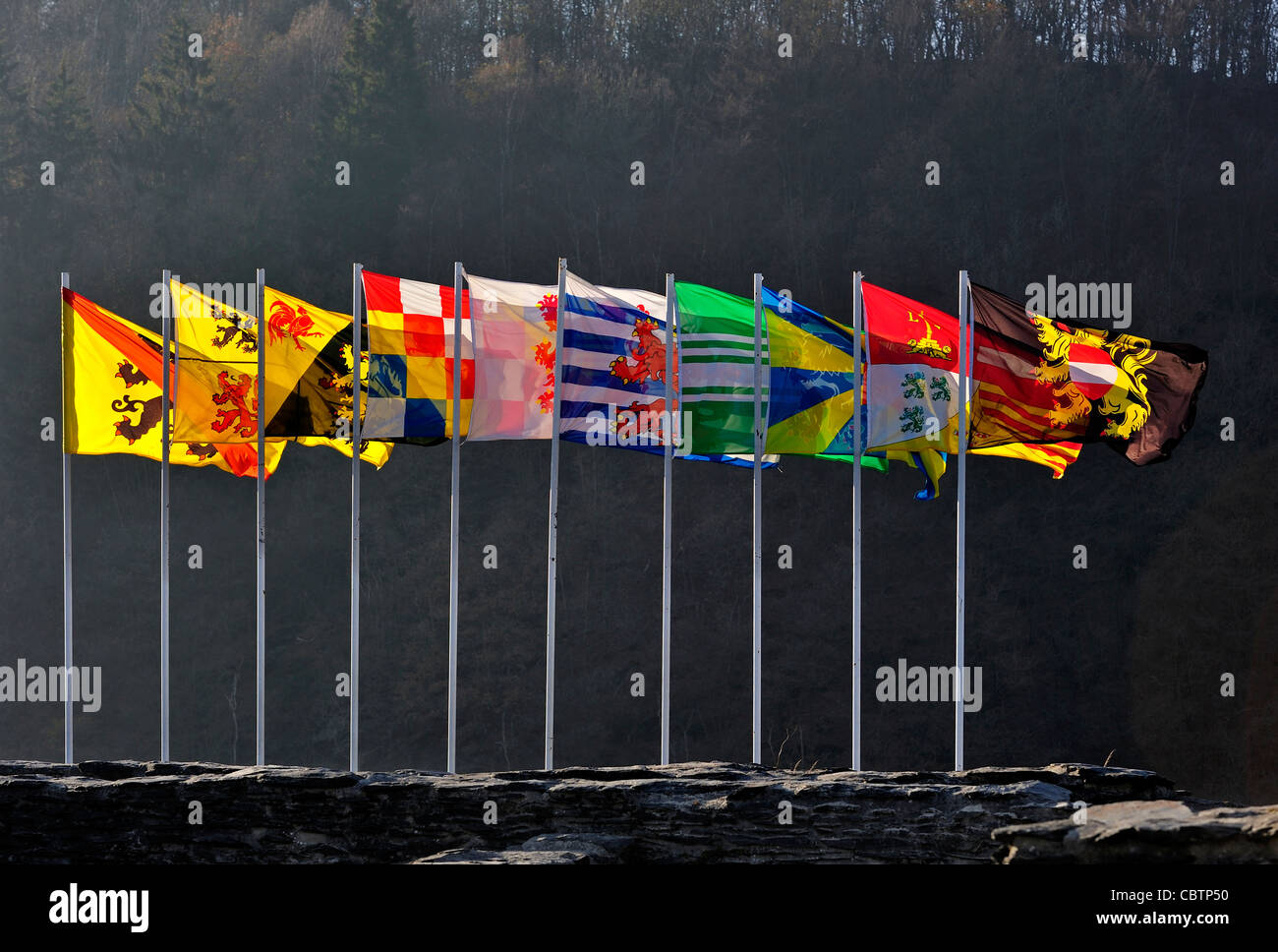 Row of flags showing coat of arms of Flemish and Walloon provinces in kingdom Belgium - Stock Image