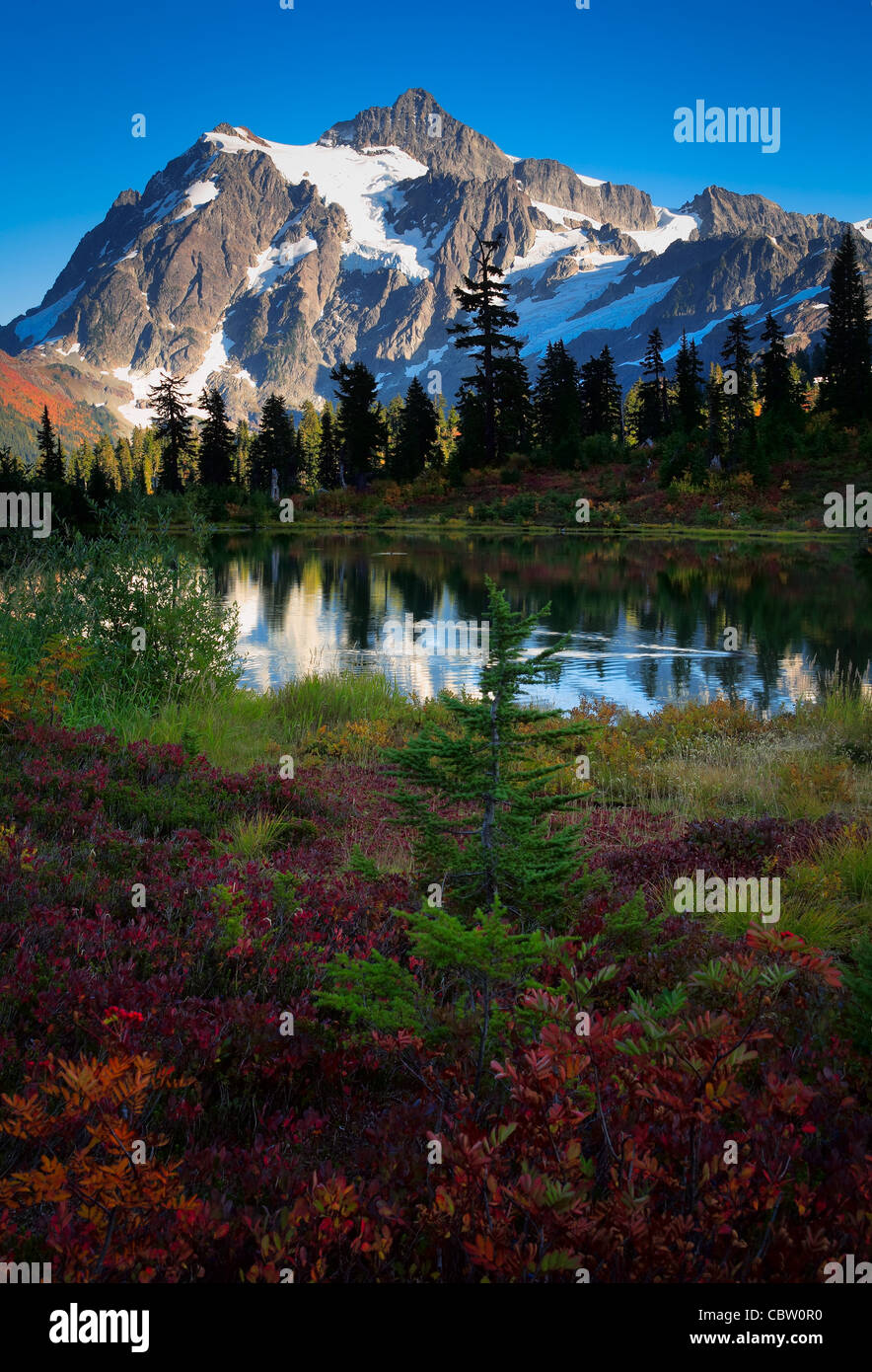 Mount Shuksan in Washington state's North Cascades National Park reflecting in Picture Lake - Stock Image