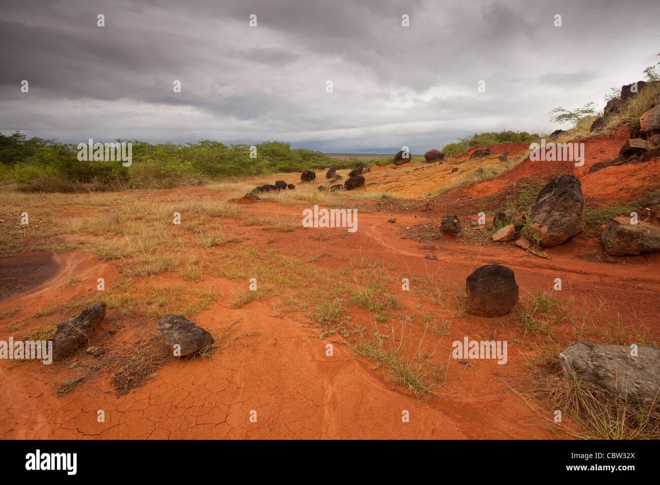 Landscape at Sarigua national park, Herrera province, Republic of Panama. - Stock Image