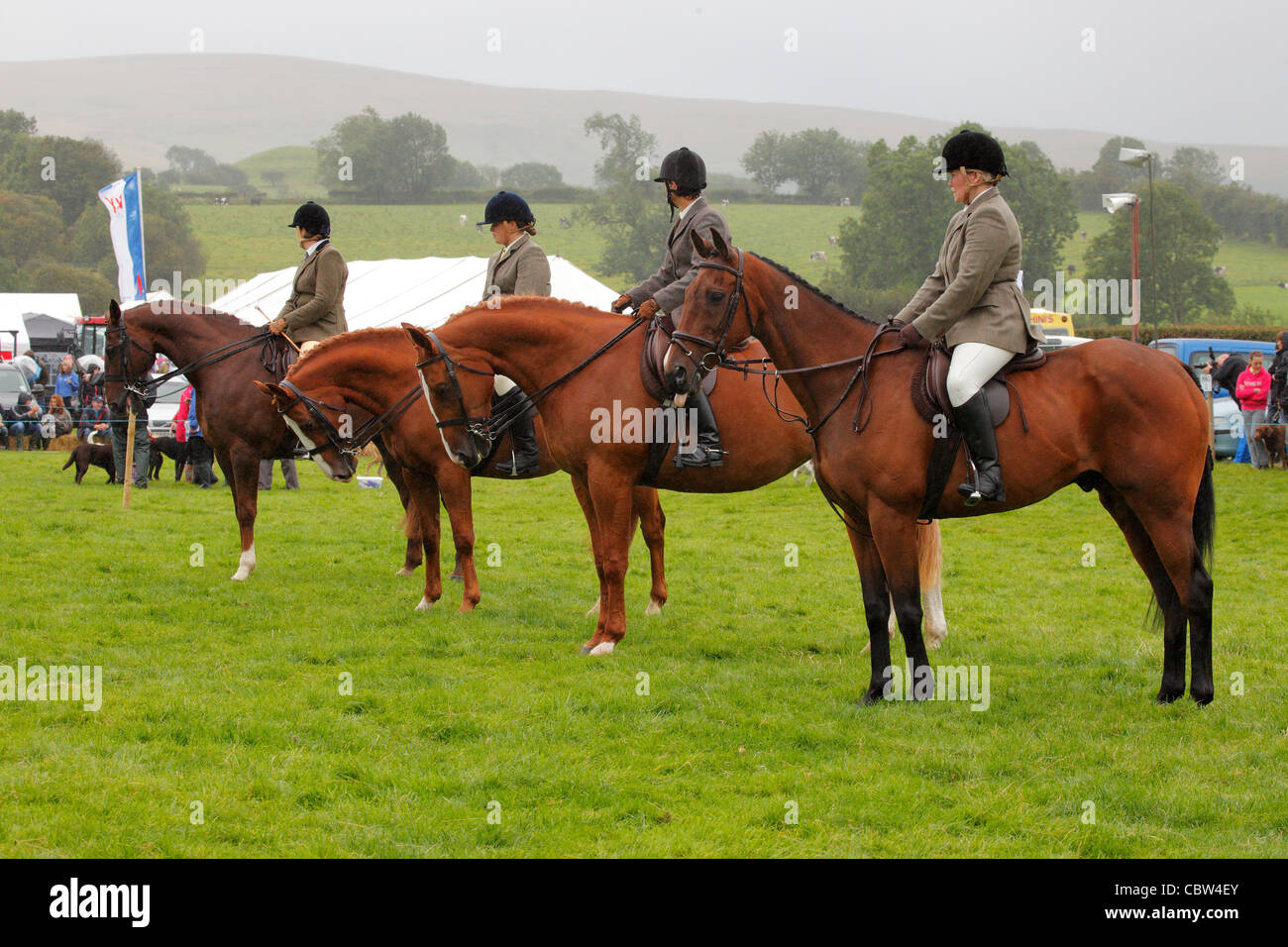 Horses and riders on the show ground at Hesket Newmarket Agricultural Society Show, Cumbria, England, UK - Stock Image