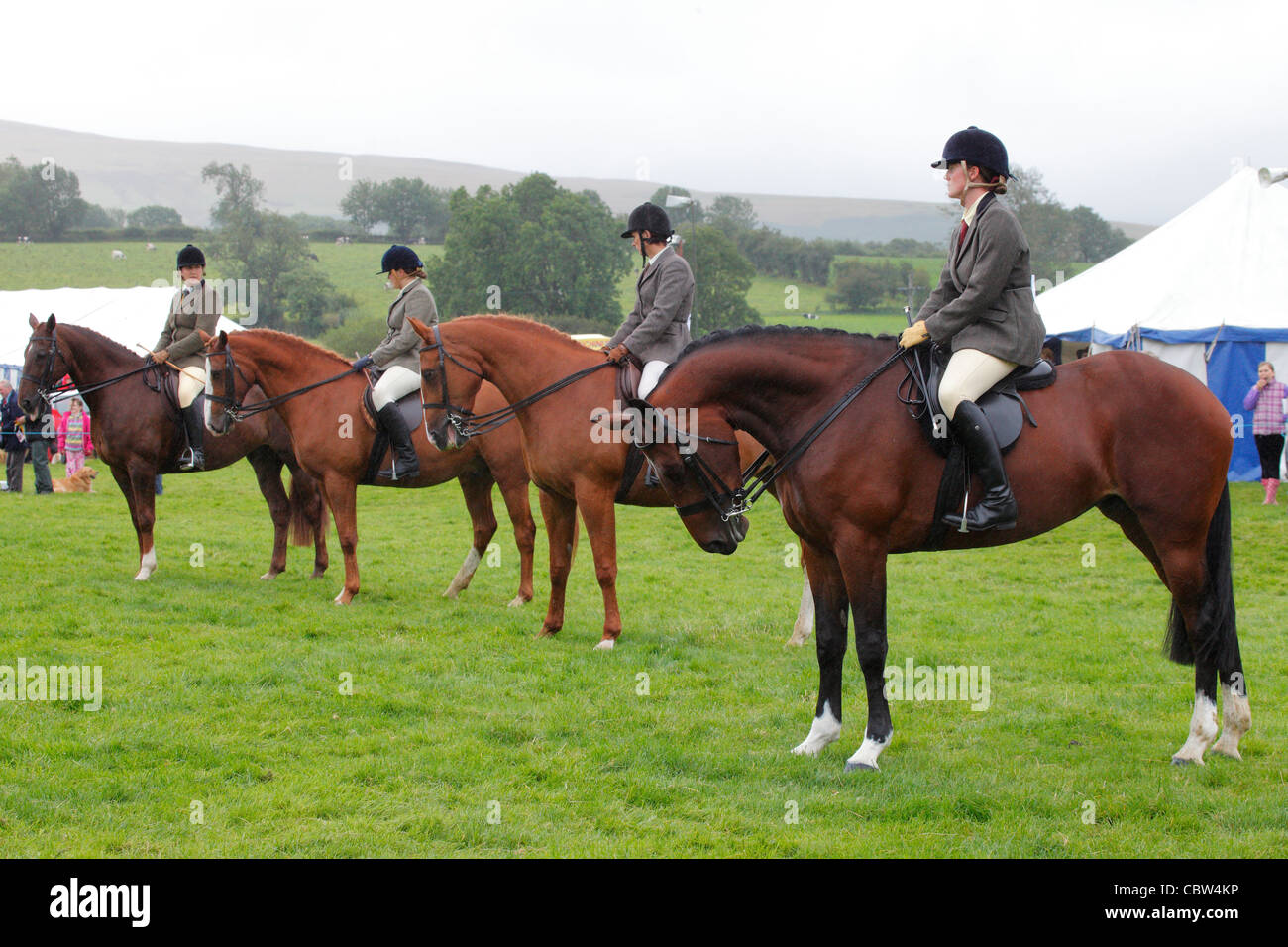 Line of Horses and riders on the show ground at Hesket Newmarket Agricultural Society Show, Cumbria, England, UK - Stock Image
