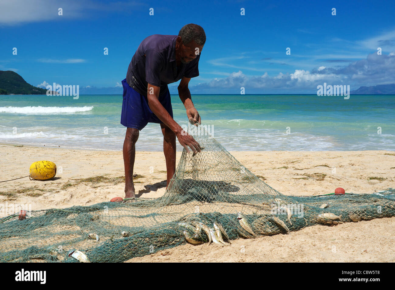 Local fisherman taking fish from the nets that have just been brought in, Seychelles, Mahe Island - Stock Image